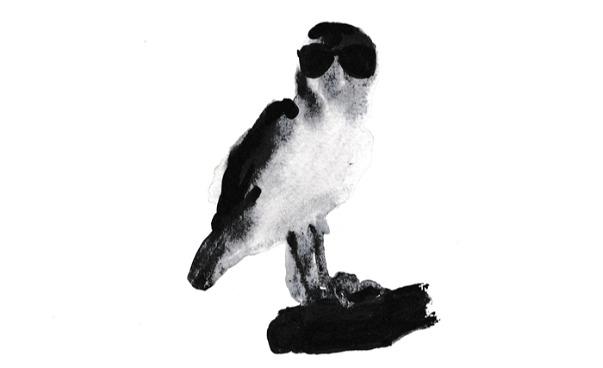 Tuschmålning i svart- och gråskala på fågel med solglasögon. (bild